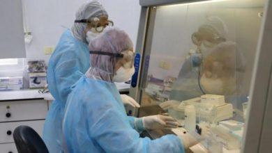 Photo of صحة غزة تسجل 108 إصابة جديدة بفيروس كورونا خلال 24 ساعة