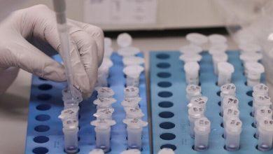 """Photo of عالمة أمريكية: فقط """"معجزة بيولوجية"""" يمكنها أن توقف تفشي وباء كورونا"""