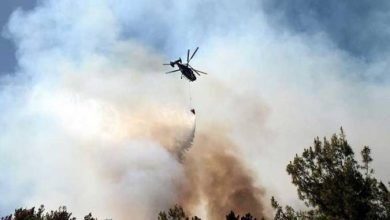 Photo of إسرائيل ترش مبيدات كيميائية خطيرة على الأراضي الزراعية الحدودية لقطاع غزة