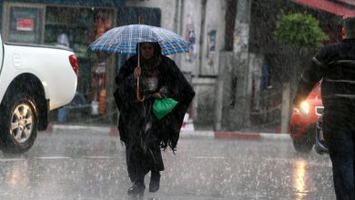 Photo of طقس فلسطين : استمرار تأثير المنخفض الجوي وأمطار متفرقة