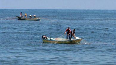Photo of أحوال الطقس غداً الجمعة وتحذير للصيادين