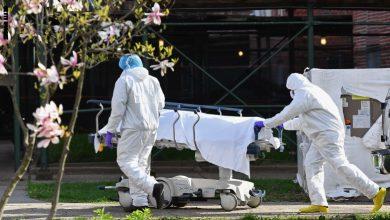 Photo of أمريكا تسجل أضخم حصيلة إصابات يومية بفيروس كورونا في العالم