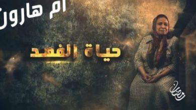 Photo of الجيش الإسرائيلي يُعلق على قصة مسلسل أم هارون الكويتي عن اليهود