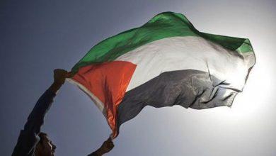 Photo of سفير فلسطين لدى الاتحاد الأوروبي يكشف عدد مصابين كورونا من الفلسطينيين في بلجيكا